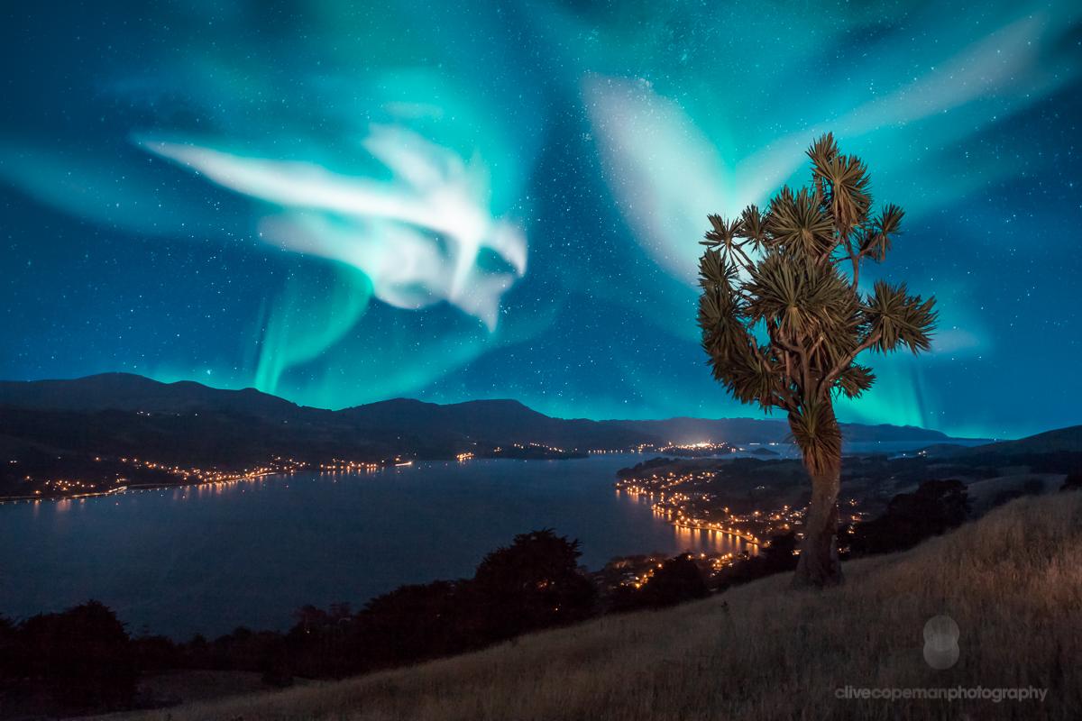 Otago Harbour Aurora-